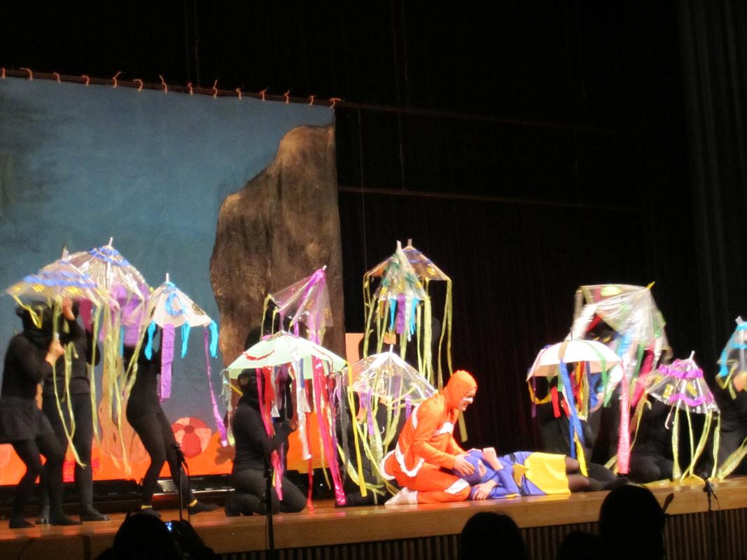 2014 - Dory swims through jellyfish